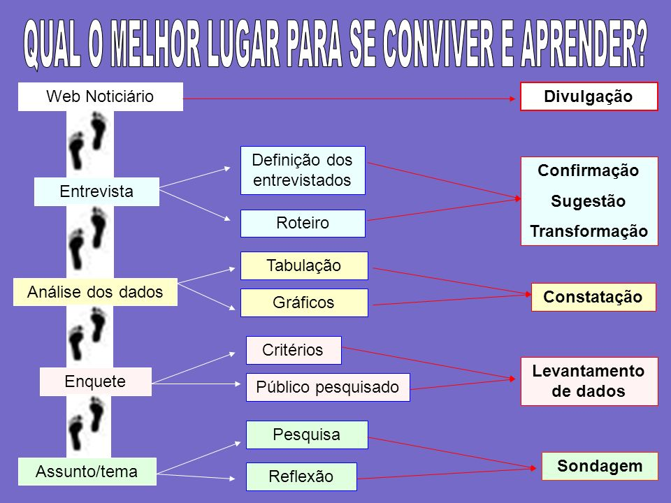 Entrevista Web Noticiário Divulgação Roteiro Análise dos dados Tabulação Enquete Público pesquisado Pesquisa Reflexão Assunto/tema Critérios Definição