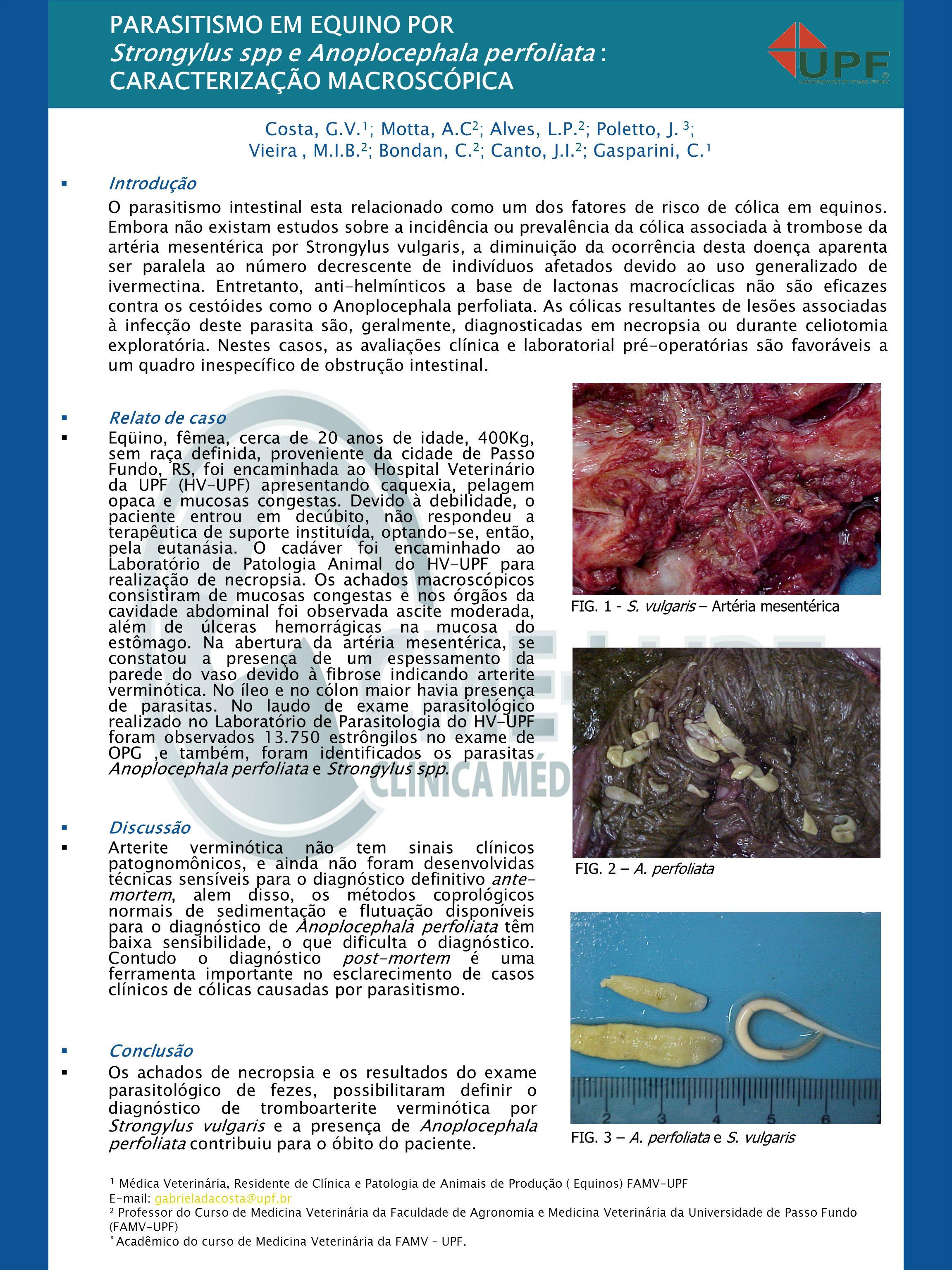 PARASITISMO EM EQUINO POR Strongylus spp e Anoplocephala perfoliata : CARACTERIZAÇÃO MACROSCÓPICA Introdução O parasitismo intestinal esta relacionado como um dos fatores de risco de cólica em equinos.