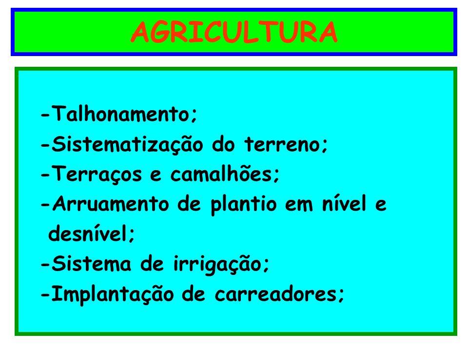 AGRICULTURA -Talhonamento; -Sistematização do terreno; -Terraços e camalhões; -Arruamento de plantio em nível e desnível; -Sistema de irrigação; -Impl