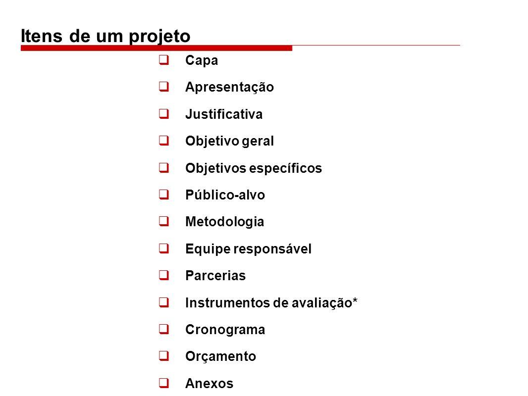 Itens de um projeto Capa Apresentação Justificativa Objetivo geral Objetivos específicos Público-alvo Metodologia Equipe responsável Parcerias Instrum