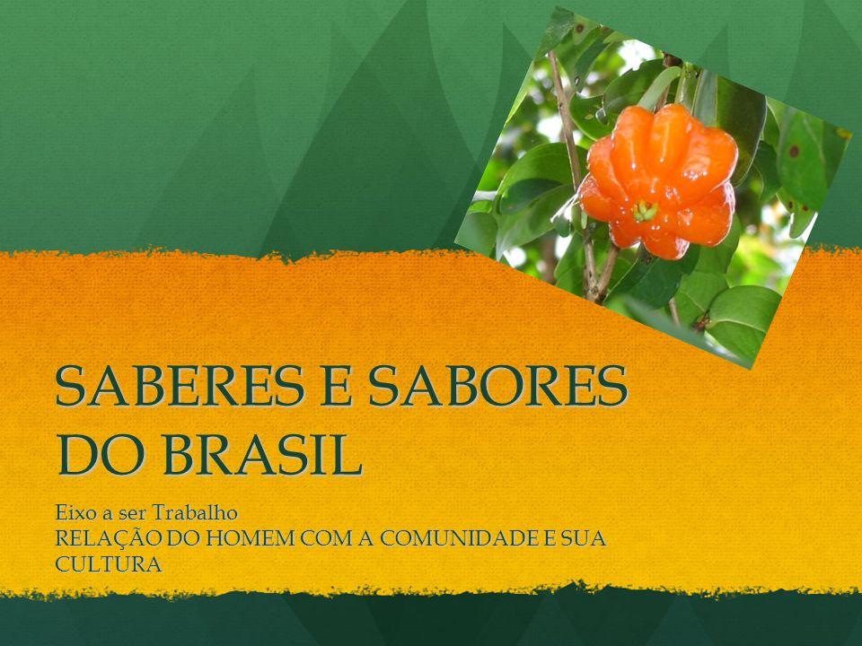 SABERES E SABORES DO BRASIL Eixo a ser Trabalho RELAÇÃO DO HOMEM COM A COMUNIDADE E SUA CULTURA