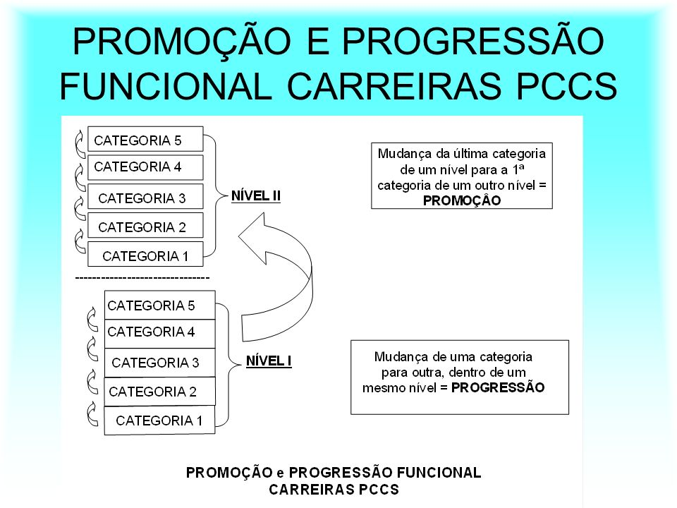 PROMOÇÃO E PROGRESSÃO FUNCIONAL CARREIRAS PCCS