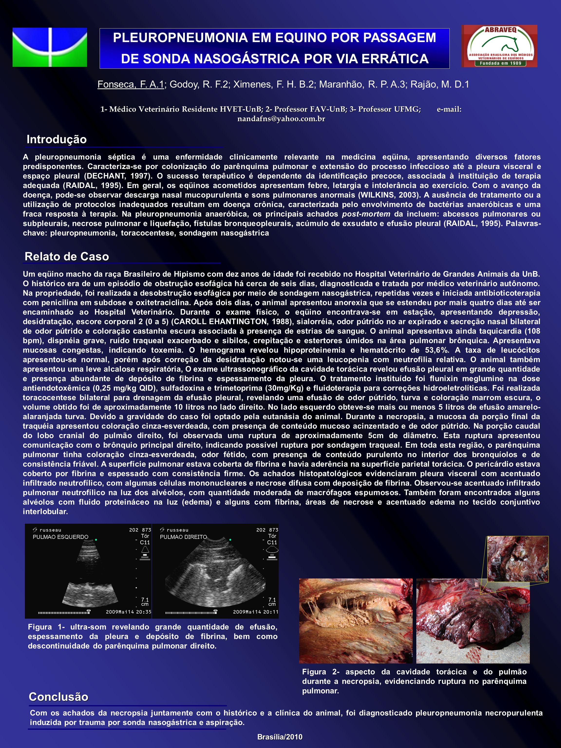 PLEUROPNEUMONIA EM EQUINO POR PASSAGEM DE SONDA NASOGÁSTRICA POR VIA ERRÁTICA 1- Médico Veterinário Residente HVET-UnB; 2- Professor FAV-UnB; 3- Profe