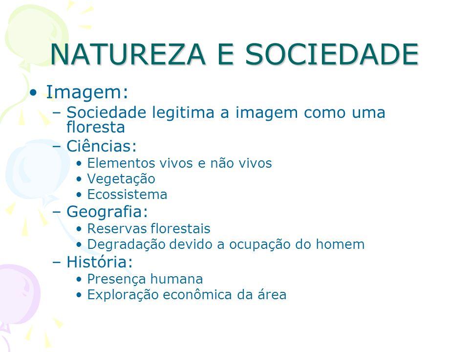 NATUREZA E SOCIEDADE Imagem: –Sociedade legitima a imagem como uma floresta –Ciências: Elementos vivos e não vivos Vegetação Ecossistema –Geografia: R