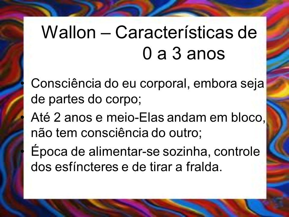 Wallon – Características de 0 a 3 anos Consciência do eu corporal, embora seja de partes do corpo; Até 2 anos e meio-Elas andam em bloco, não tem cons