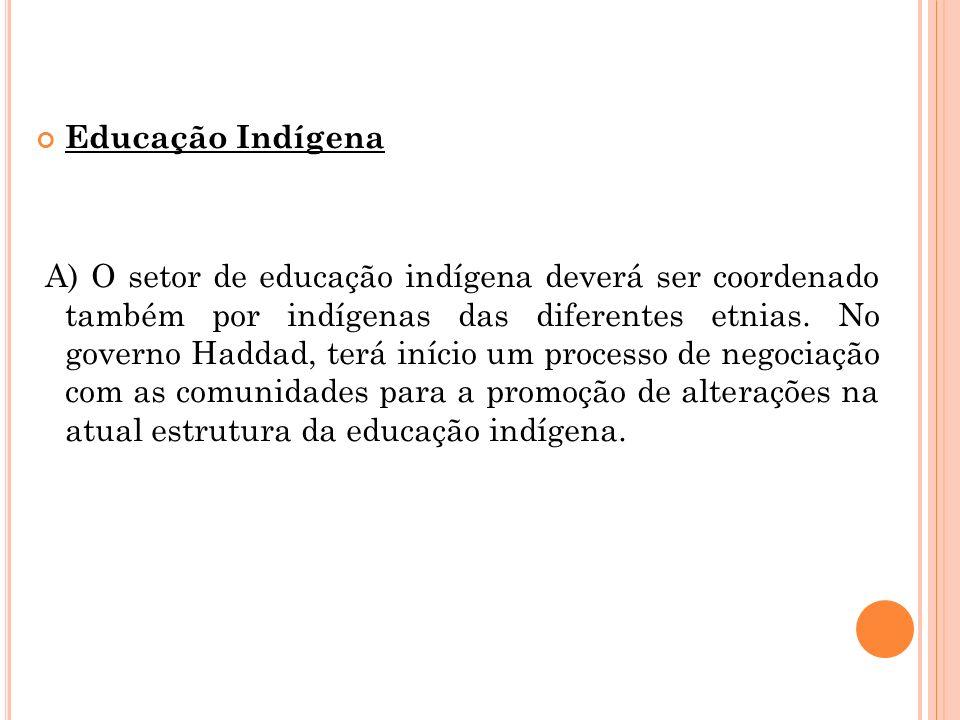 Educação Indígena A) O setor de educação indígena deverá ser coordenado também por indígenas das diferentes etnias. No governo Haddad, terá início um