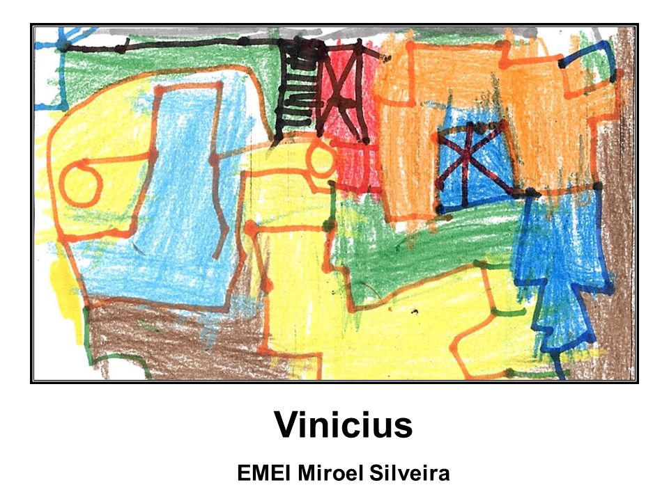 Vinicius EMEI Miroel Silveira