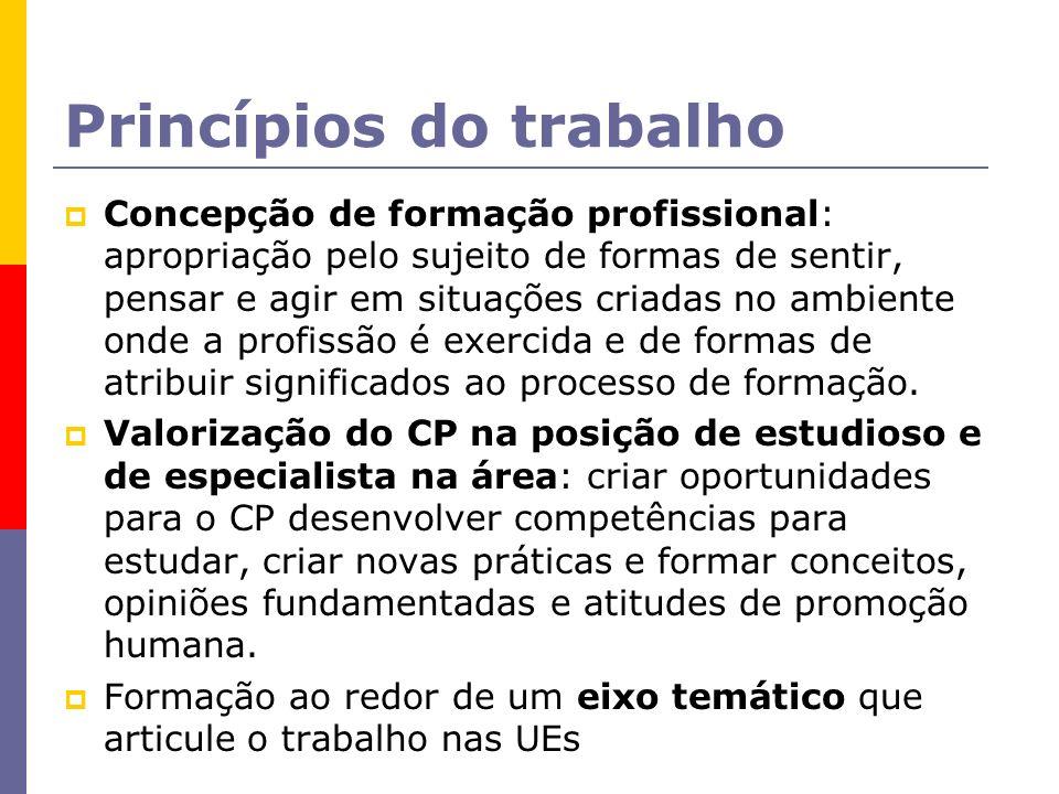 Princípios do trabalho Concepção de formação profissional: apropriação pelo sujeito de formas de sentir, pensar e agir em situações criadas no ambient