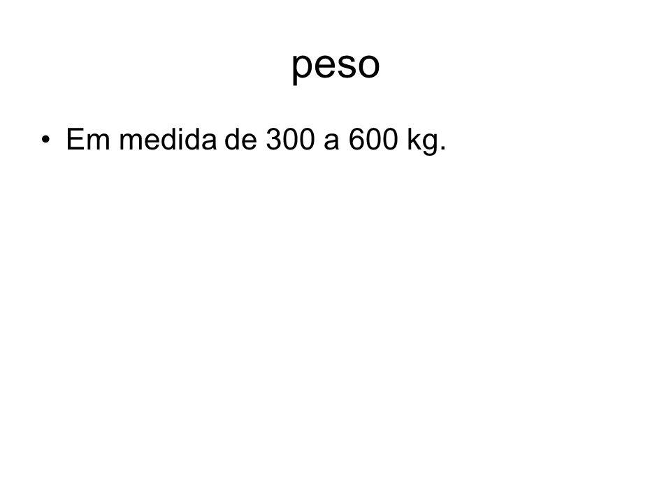 peso Em medida de 300 a 600 kg.