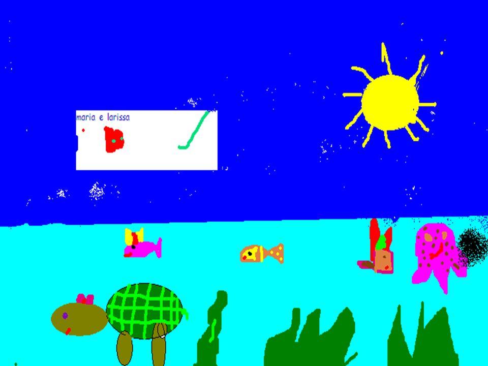 Animal marinho A tartaruga carrega em suas costas a sua casinha a tartaruga bota ovos debaixo da areia e seu casco é duro como pedra.