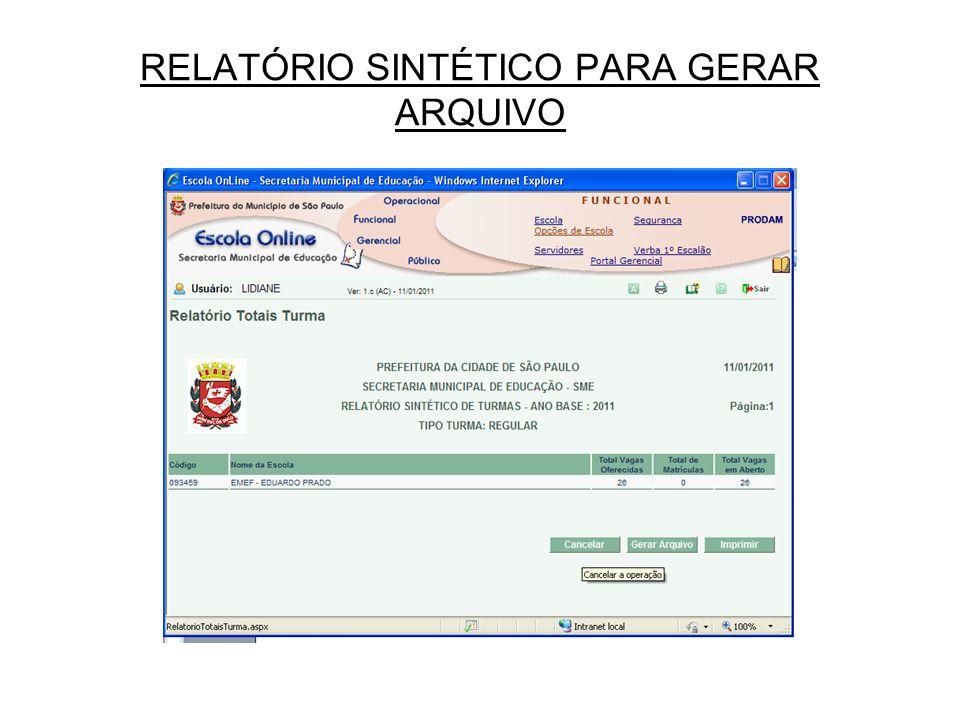 RELATÓRIO SINTÉTICO PARA GERAR ARQUIVO