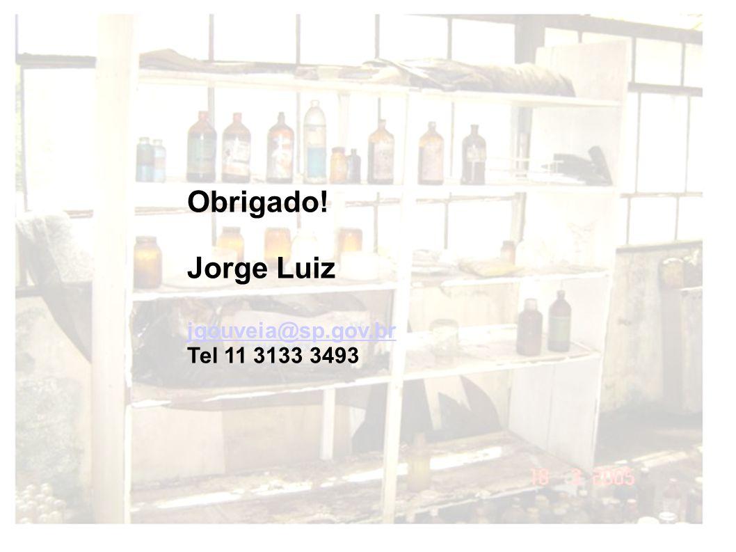 Obrigado! Jorge Luiz jgouveia@sp.gov.br Tel 11 3133 3493