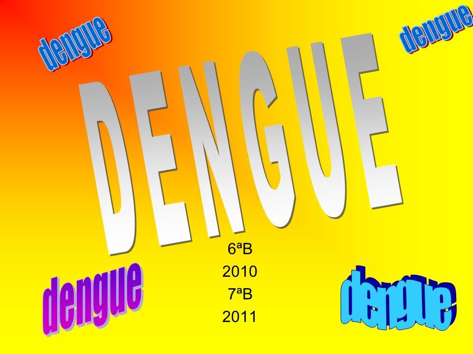 6ªB 2010 7ªB 2011