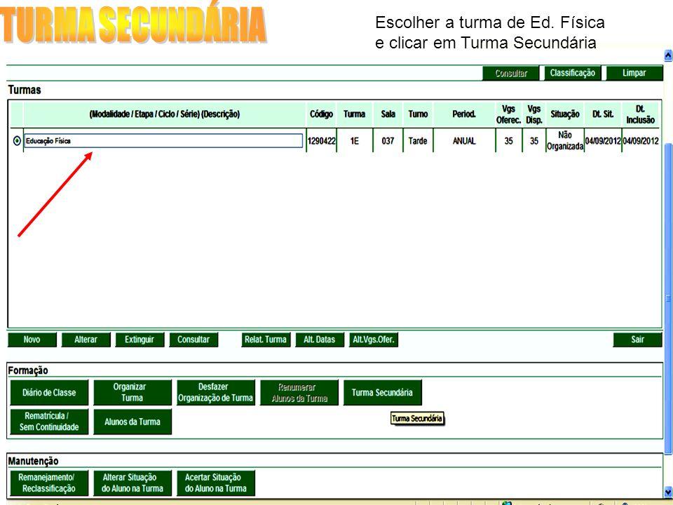 Escolher a turma de Ed. Física e clicar em Turma Secundária