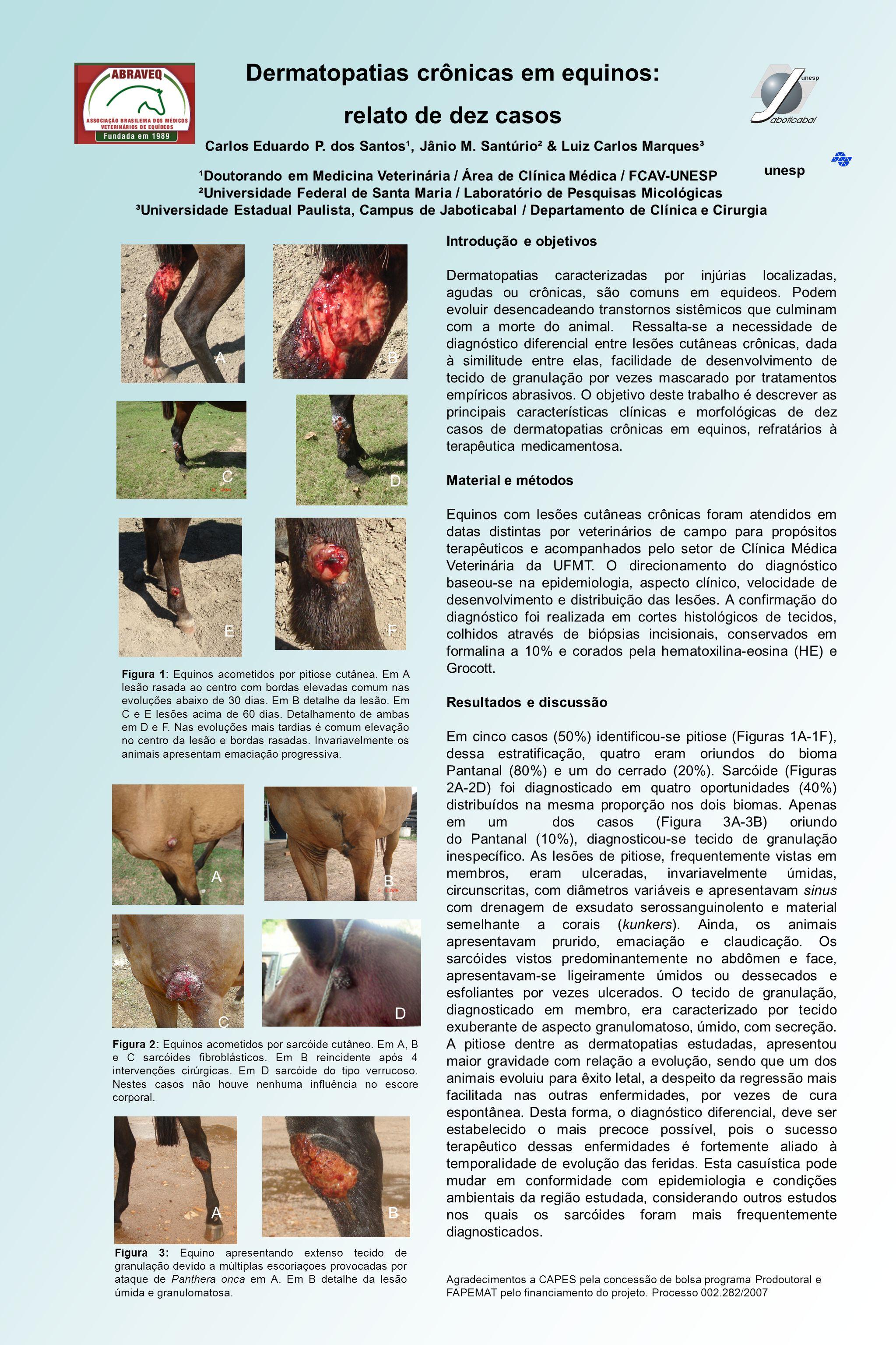 Dermatopatias crônicas em equinos: relato de dez casos Carlos Eduardo P. dos Santos¹, Jânio M. Santúrio² & Luiz Carlos Marques³ ¹Doutorando em Medicin