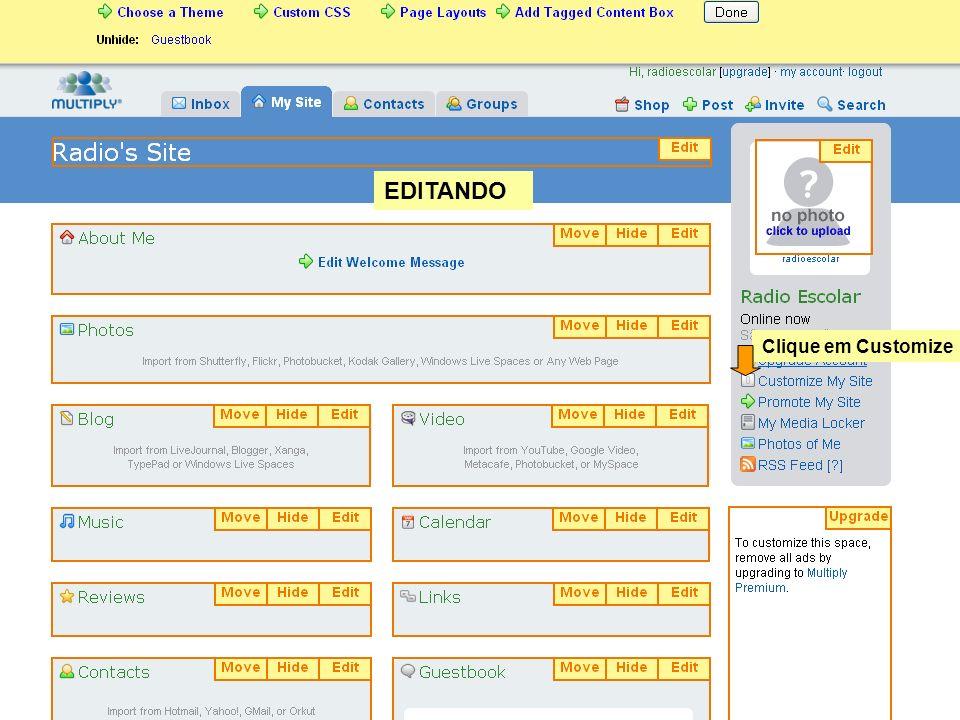 EDITANDO Clique em Customize