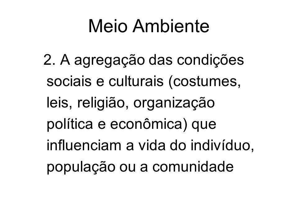 2. A agregação das condições sociais e culturais (costumes, leis, religião, organização política e econômica) que influenciam a vida do indivíduo, pop
