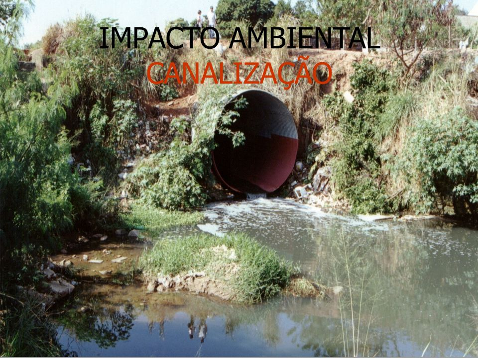 IMPACTO AMBIENTAL CANALIZAÇÃO