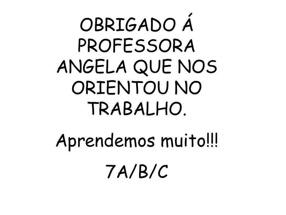 OBRIGADO Á PROFESSORA ANGELA QUE NOS ORIENTOU NO TRABALHO. Aprendemos muito!!! 7A/B/C