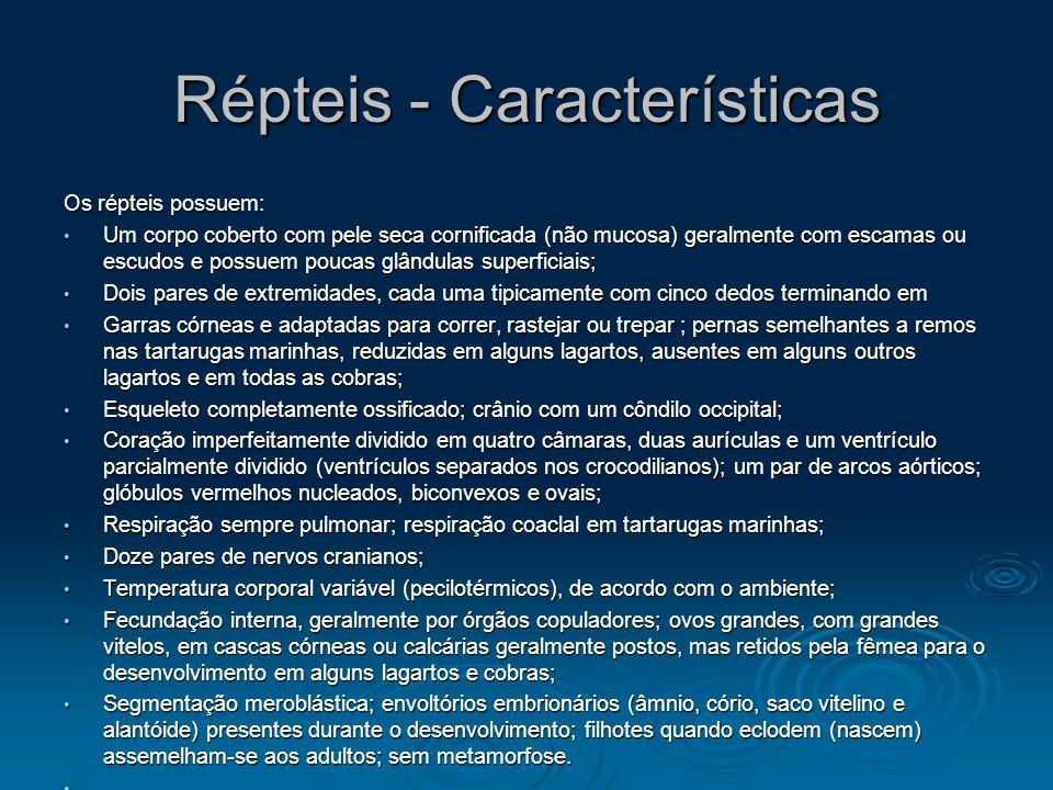 Répteis - Características Os répteis possuem: Um corpo coberto com pele seca cornificada (não mucosa) geralmente com escamas ou escudos e possuem pouc