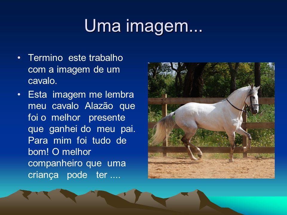 Uma imagem... Termino este trabalho com a imagem de um cavalo. Esta imagem me lembra meu cavalo Alazão que foi o melhor presente que ganhei do meu pai