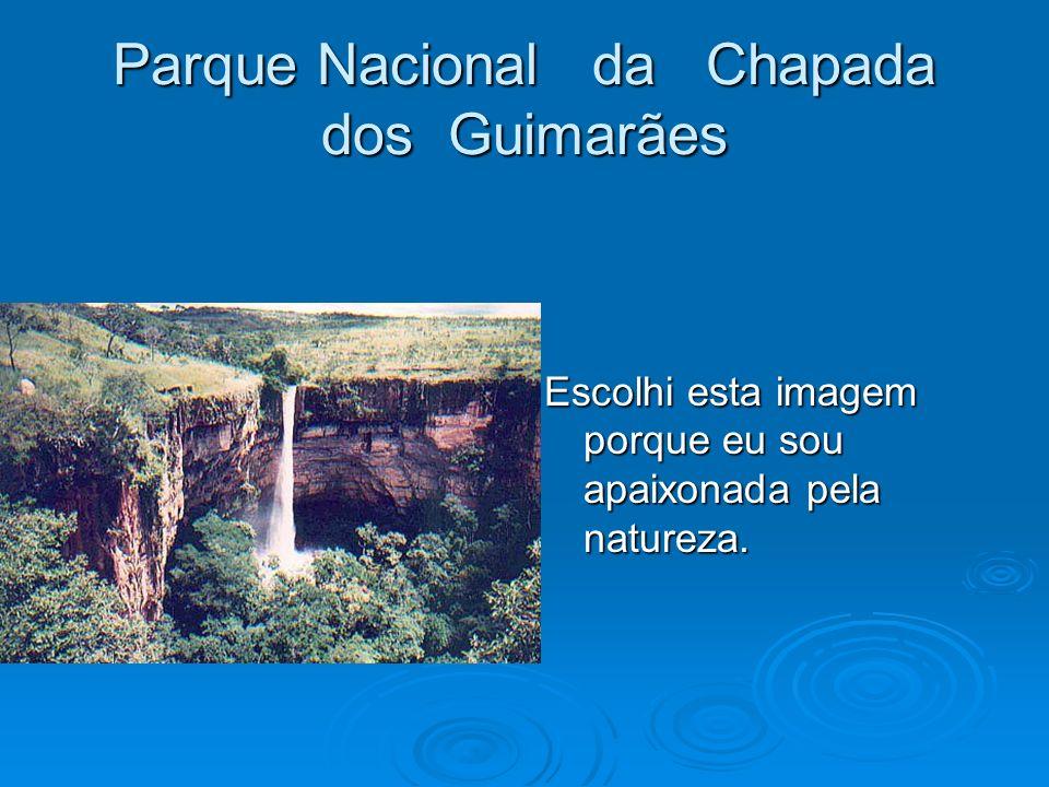 Parque Nacional da Chapada dos Guimarães Escolhi esta imagem porque eu sou apaixonada pela natureza.