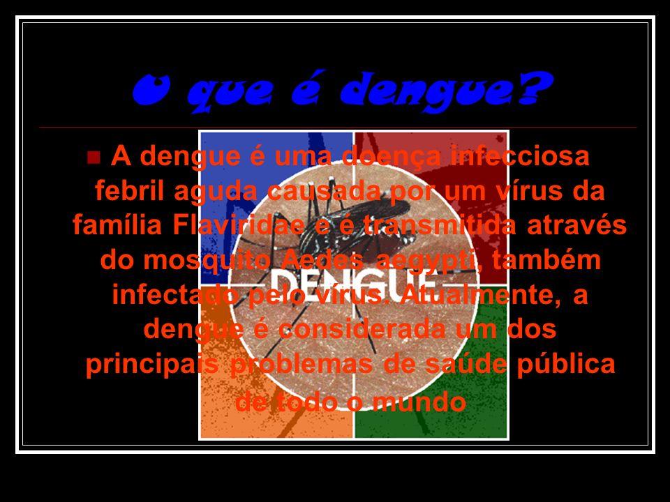 Dengue Bruna Lima e Maryanne Morais