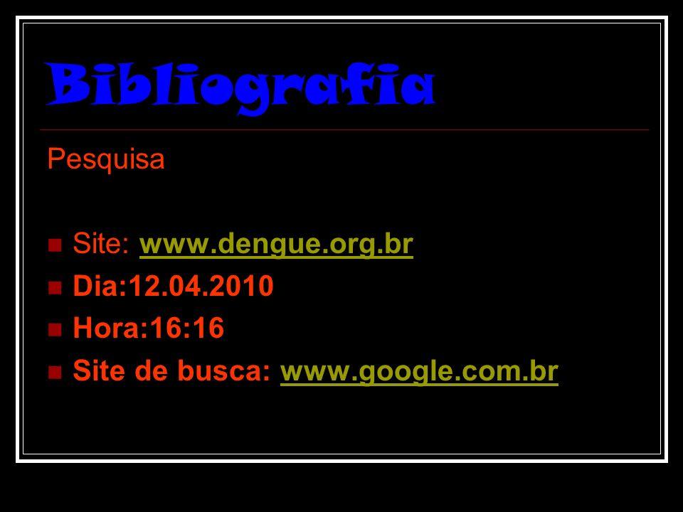Bibliografia Pesquisa Site: www.dengue.org.brwww.dengue.org.br Dia:12.04.2010 Hora:16:16 Site de busca: www.google.com.brwww.google.com.br