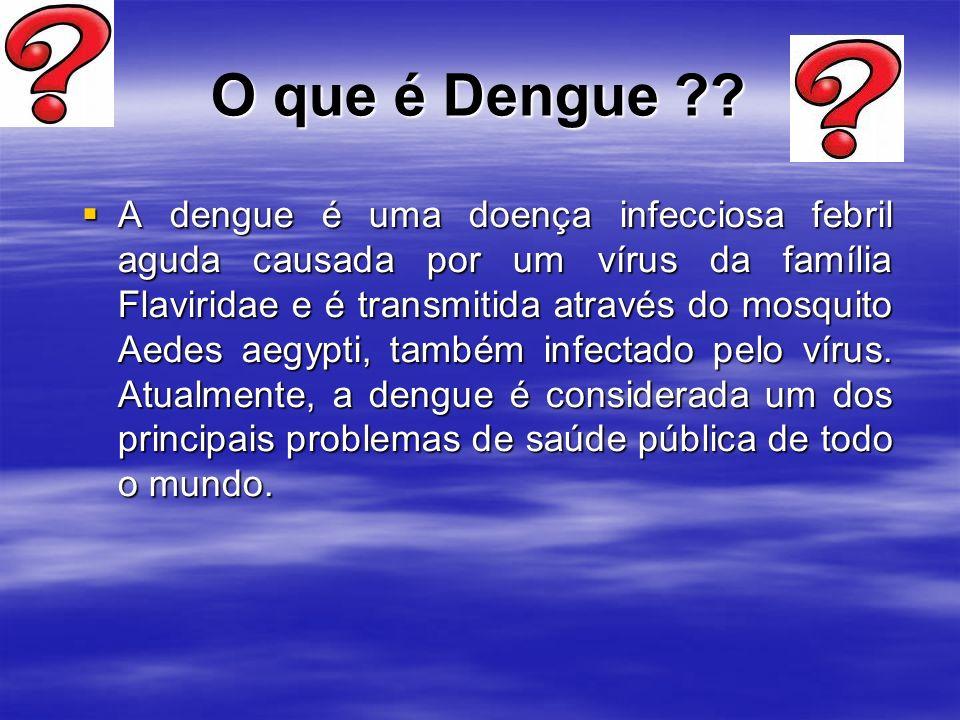 O que é Dengue ?.
