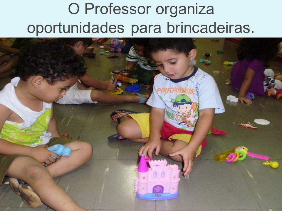 O Professor organiza oportunidades para brincadeiras.