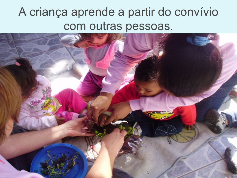 O Professor oferece às crianças novas informações e propicia experiências diversas.