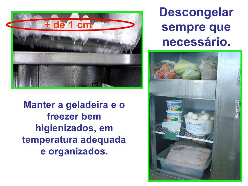 Manter a geladeira e o freezer bem higienizados, em temperatura adequada e organizados. Descongelar sempre que necessário. + de 1 cm