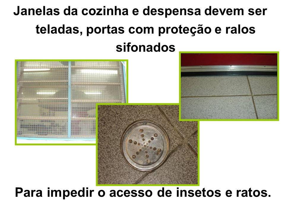 Janelas da cozinha e despensa devem ser teladas, portas com proteção e ralos sifonados Para impedir o acesso de insetos e ratos.