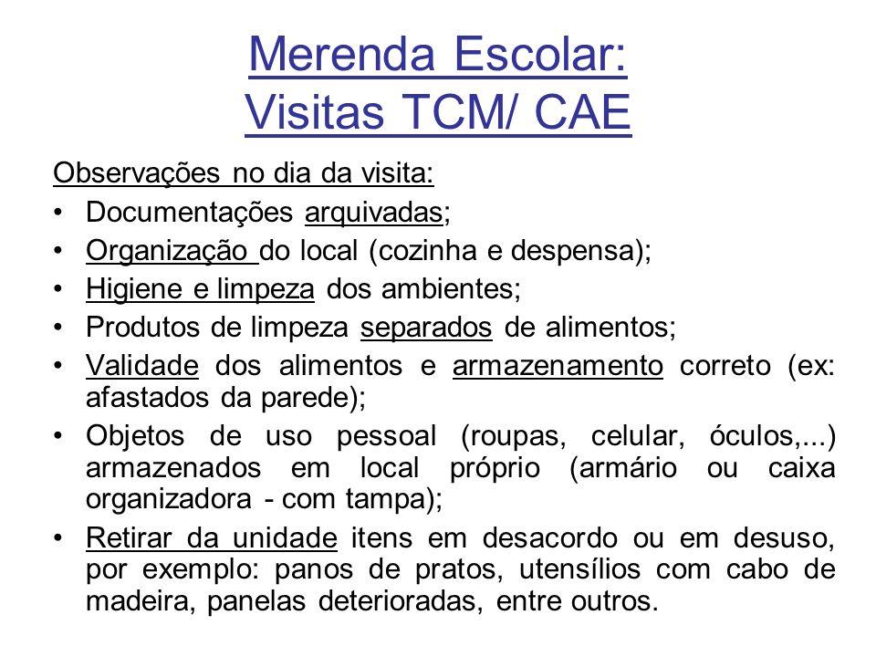 Merenda Escolar: Visitas TCM/ CAE Observações no dia da visita: Documentações arquivadas; Organização do local (cozinha e despensa); Higiene e limpeza