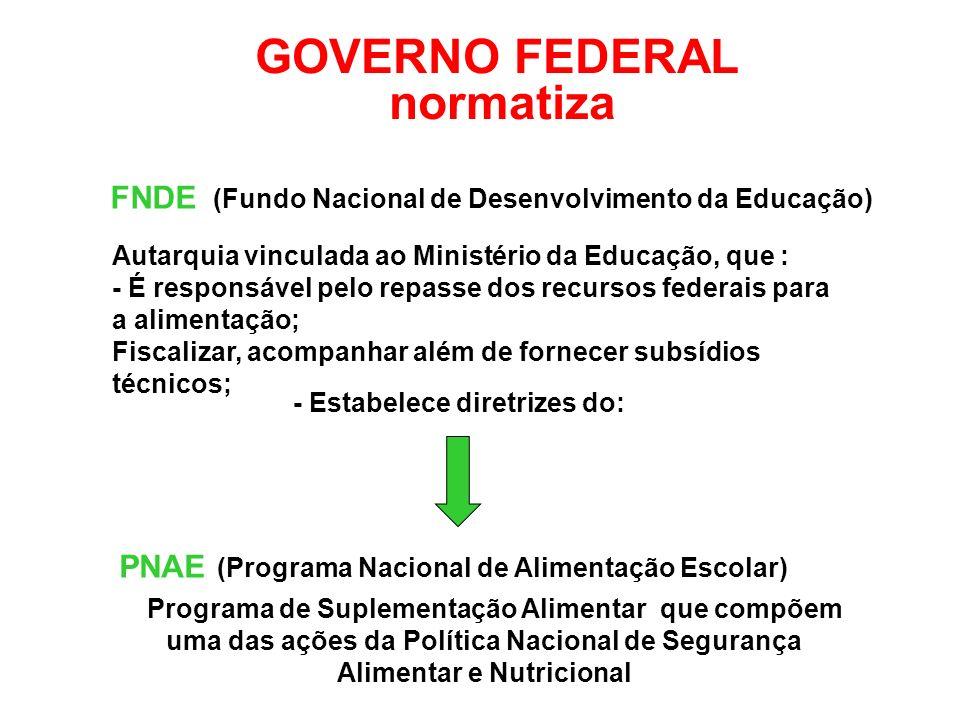 FNDE (Fundo Nacional de Desenvolvimento da Educação) GOVERNO FEDERAL normatiza PNAE (Programa Nacional de Alimentação Escolar) Autarquia vinculada ao