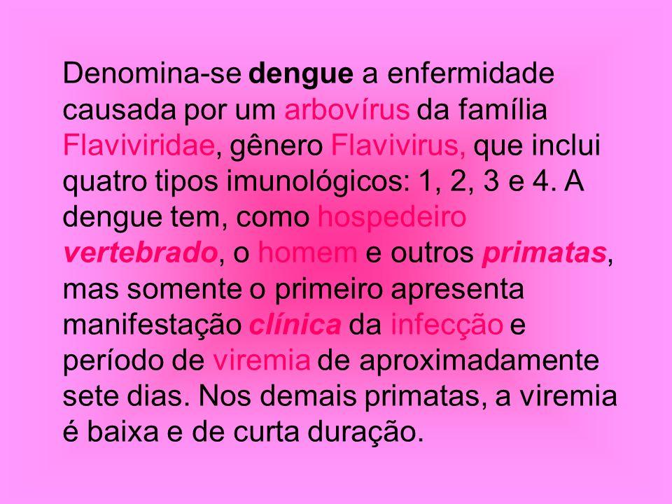 Denomina-se dengue a enfermidade causada por um arbovírus da família Flaviviridae, gênero Flavivirus, que inclui quatro tipos imunológicos: 1, 2, 3 e