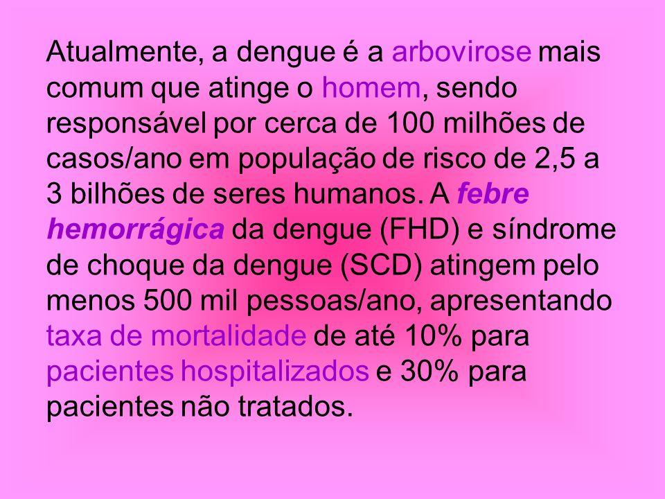 Atualmente, a dengue é a arbovirose mais comum que atinge o homem, sendo responsável por cerca de 100 milhões de casos/ano em população de risco de 2,