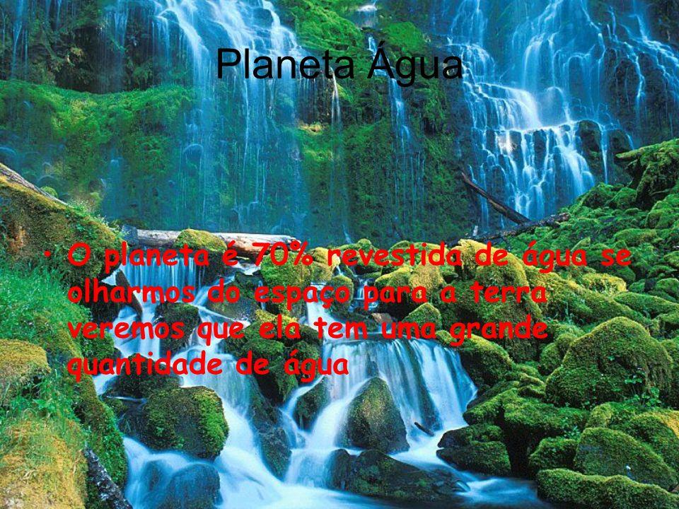 Planeta Água O planeta é 70% revestida de água se olharmos do espaço para a terra veremos que ela tem uma grande quantidade de água