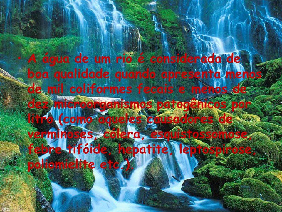 A água de um rio é considerada de boa qualidade quando apresenta menos de mil coliformes fecais e menos de dez microorganismos patogênicos por litro (