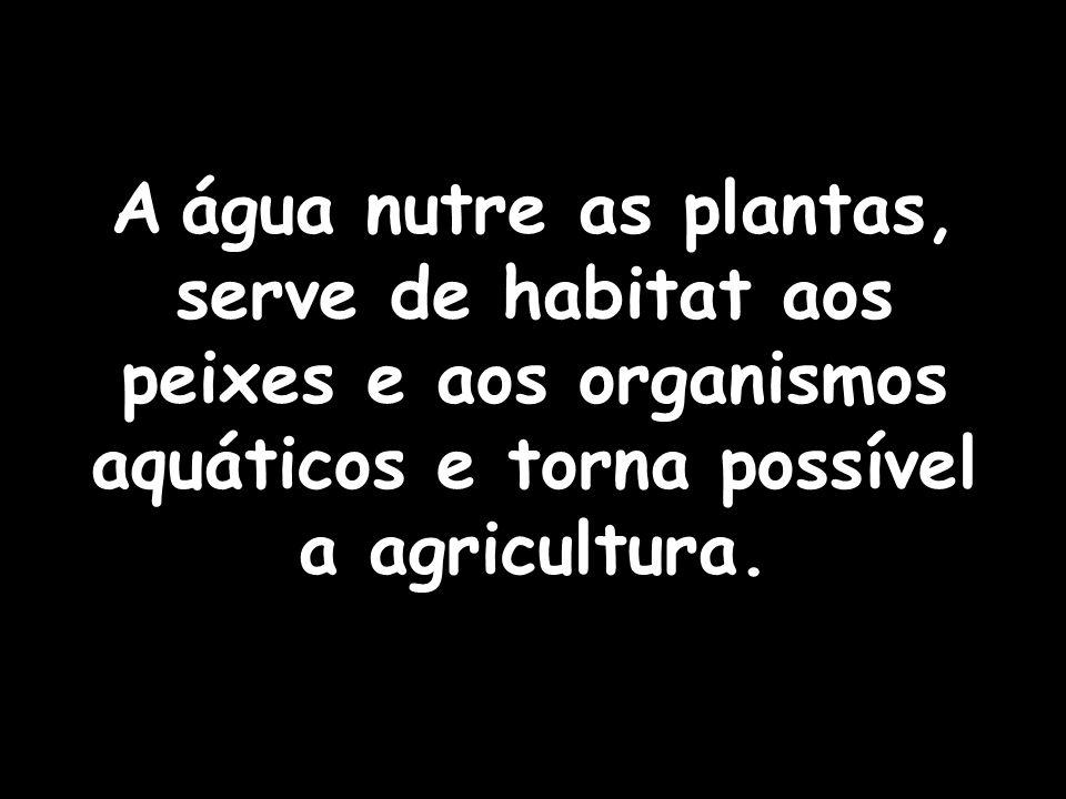 A água nutre as plantas, serve de habitat aos peixes e aos organismos aquáticos e torna possível a agricultura.