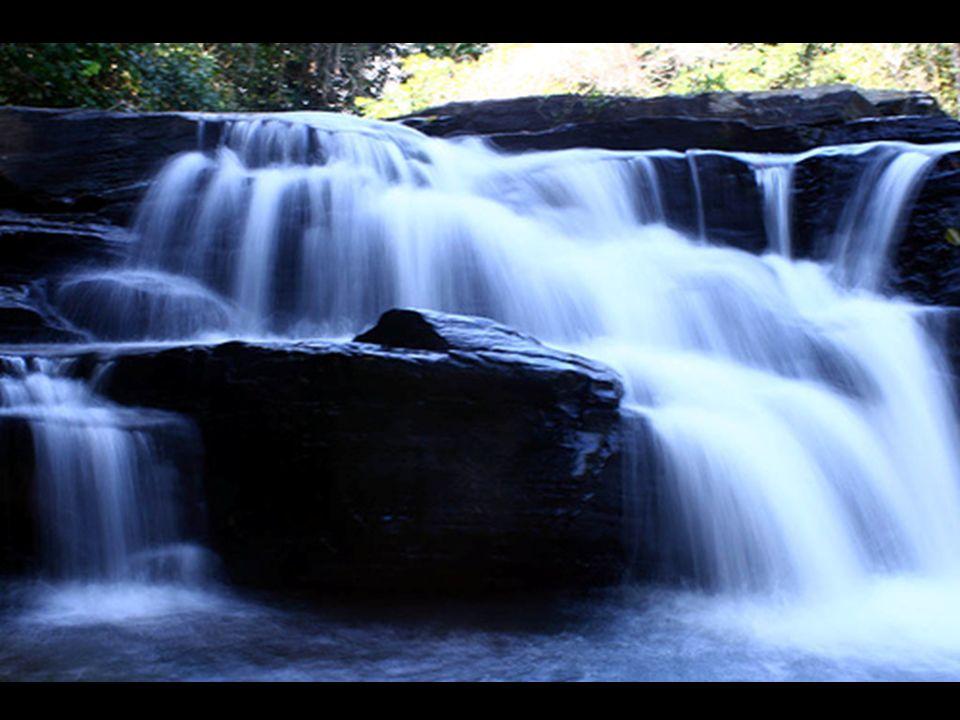 Graças às propriedades da água, a vida foi capaz de surgir e se desenvolver em nosso planeta.