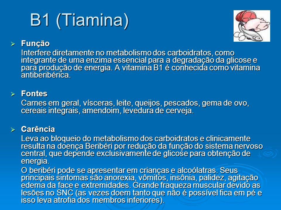 B1 (Tiamina) Função Função Interfere diretamente no metabolismo dos carboidratos, como integrante de uma enzima essencial para a degradação da glicose