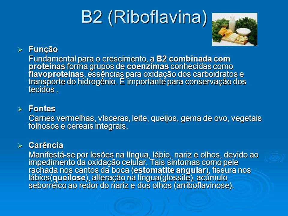 B2 (Riboflavina) Função Função Fundamental para o crescimento, a B2 combinada com proteínas forma grupos de coenzimas conhecidas como flavoproteínas,
