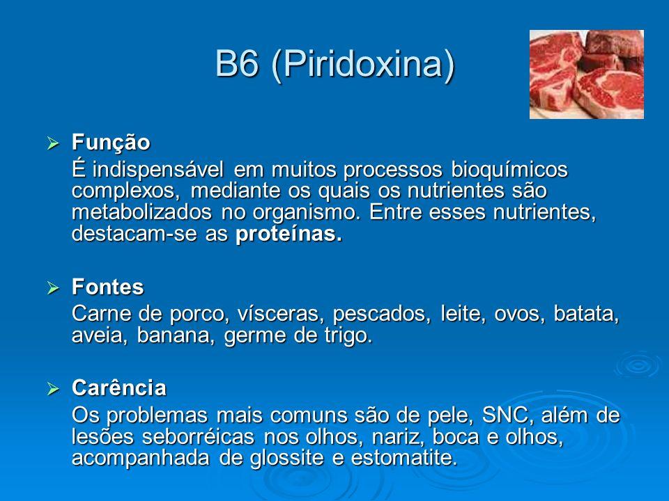 B6 (Piridoxina) Função Função É indispensável em muitos processos bioquímicos complexos, mediante os quais os nutrientes são metabolizados no organism