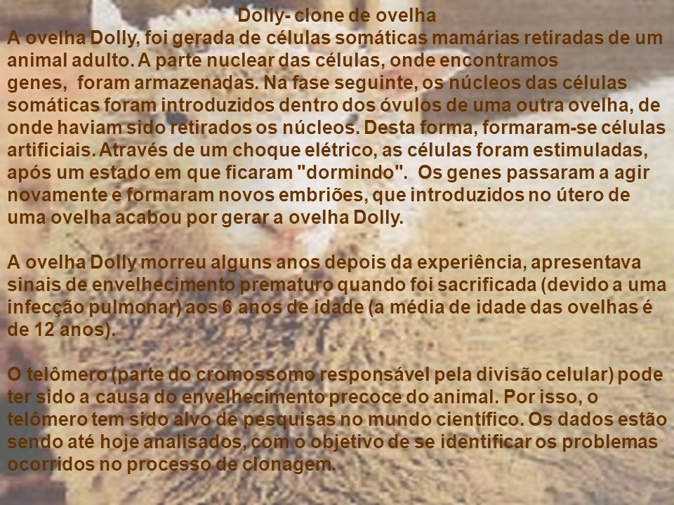 Dolly- clone de ovelha A ovelha Dolly, foi gerada de células somáticas mamárias retiradas de um animal adulto. A parte nuclear das células, onde encon