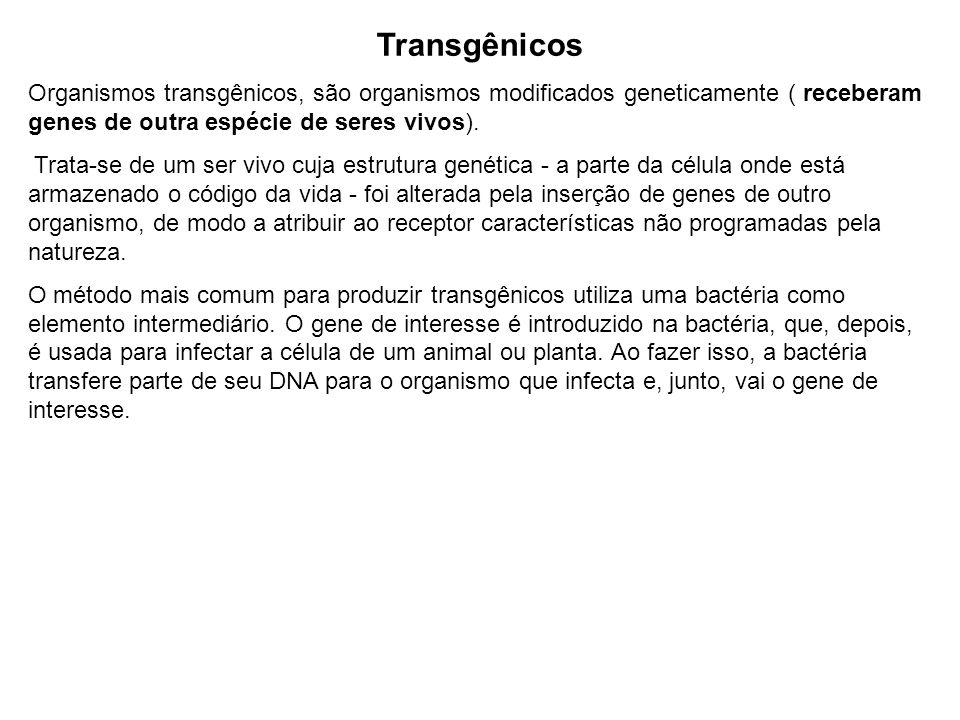 Transgênicos Organismos transgênicos, são organismos modificados geneticamente ( receberam genes de outra espécie de seres vivos). Trata-se de um ser