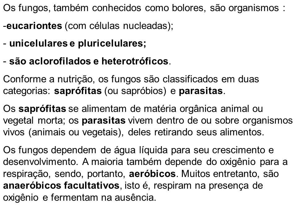Os fungos, também conhecidos como bolores, são organismos : -eucariontes (com células nucleadas); - unicelulares e pluricelulares; - são aclorofilados