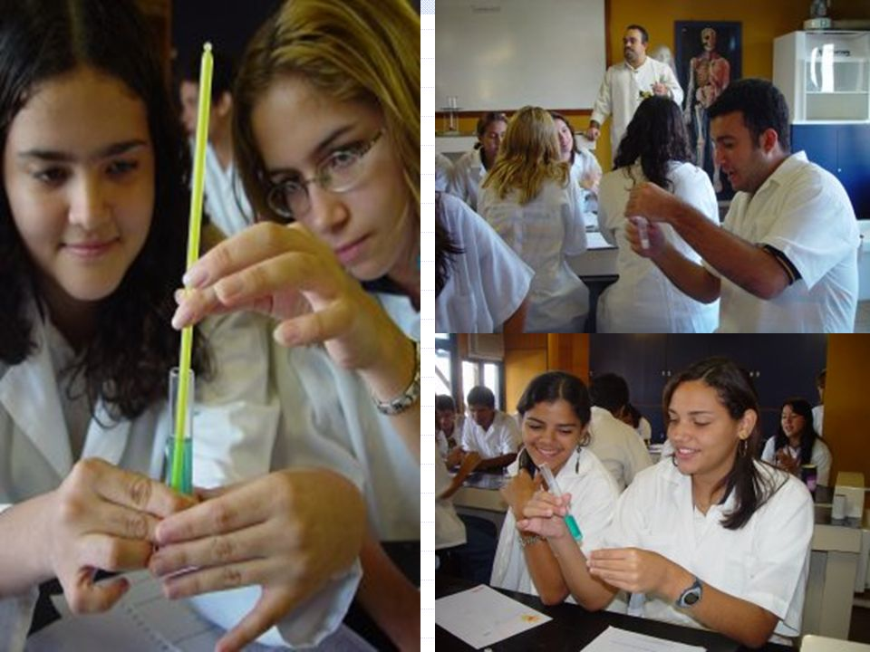 Reações químicas (transformações ) Mudança de cor Formação de gases Formação de sólidos Alteração de temperatura Reações químicas (transformações ) Mu