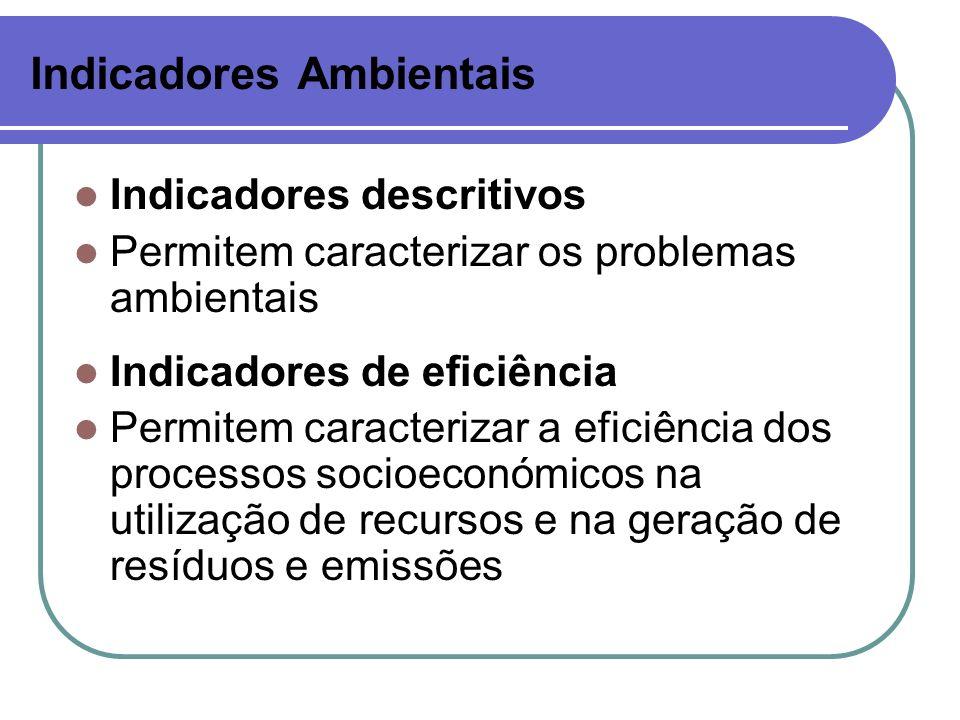 Indicadores Ambientais Indicadores descritivos Permitem caracterizar os problemas ambientais Indicadores de eficiência Permitem caracterizar a eficiên