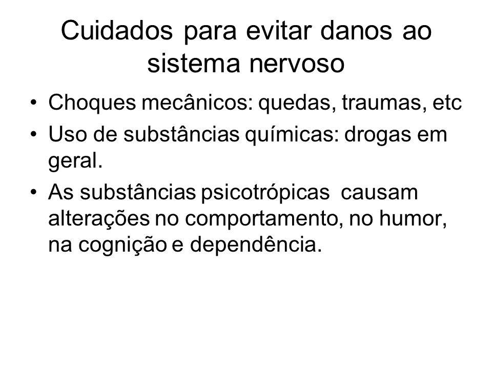 Cuidados para evitar danos ao sistema nervoso Choques mecânicos: quedas, traumas, etc Uso de substâncias químicas: drogas em geral. As substâncias psi